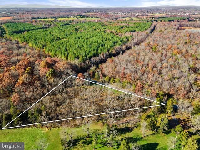 11854 Lucky Hill Road, REMINGTON, VA 22734 (#VAFQ168202) :: AJ Team Realty