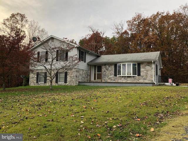2129 Cedar Grove Road, WINCHESTER, VA 22603 (#VAFV160898) :: Great Falls Great Homes