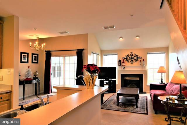 43134 Watercrest Square #303, CHANTILLY, VA 20152 (#VALO426196) :: The MD Home Team