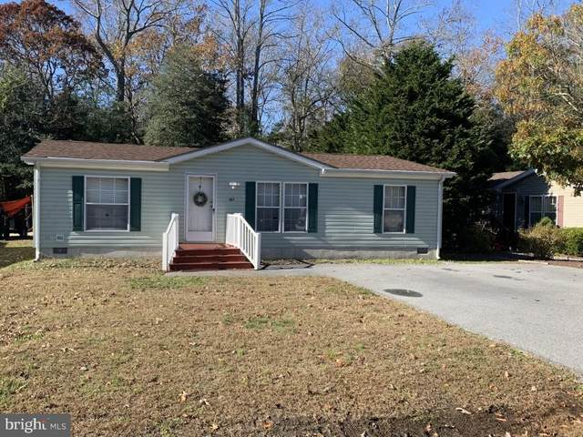 167 White Pine Drive, MILLSBORO, DE 19966 (#DESU173312) :: RE/MAX Coast and Country