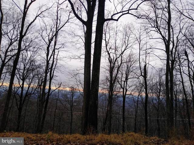 Lot 9 Deer Trail Road, FRONT ROYAL, VA 22630 (#VAWR142044) :: AJ Team Realty