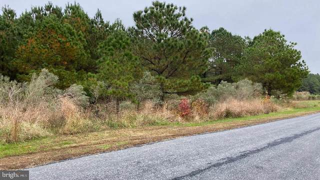 Heather Lane Lot 13, CAMBRIDGE, MD 21613 (#MDDO126436) :: RE/MAX Coast and Country