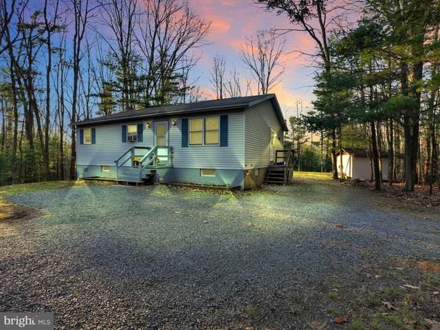 2580 Papoose Drive, AUBURN, PA 17922 (#PASK133434) :: Better Homes Realty Signature Properties