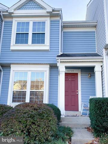 46725 Summit Terrace, STERLING, VA 20164 (#VALO426230) :: Great Falls Great Homes