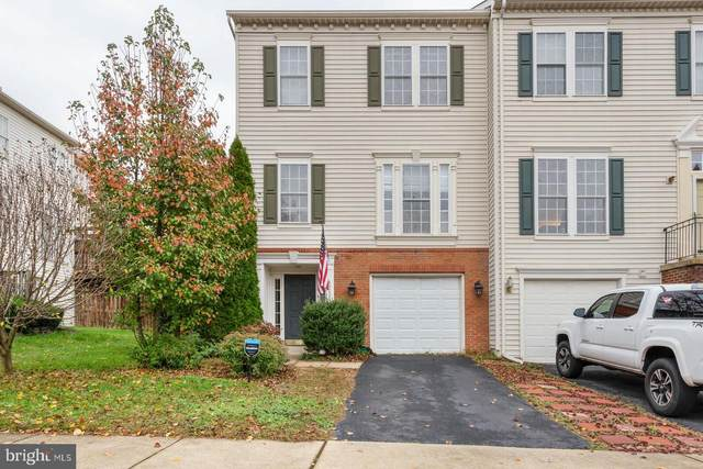 43006 Eustis Street, CHANTILLY, VA 20152 (#VALO426240) :: Great Falls Great Homes