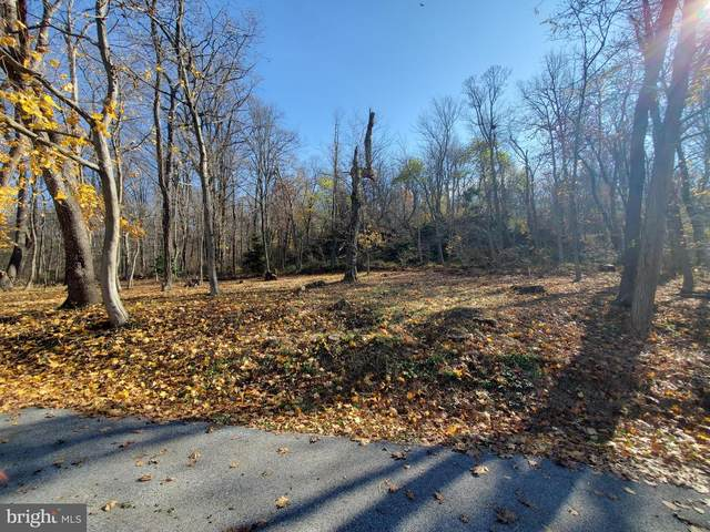 100 Chestnut Street Lot 3A, DELTA, PA 17314 (#PAYK149344) :: The Joy Daniels Real Estate Group