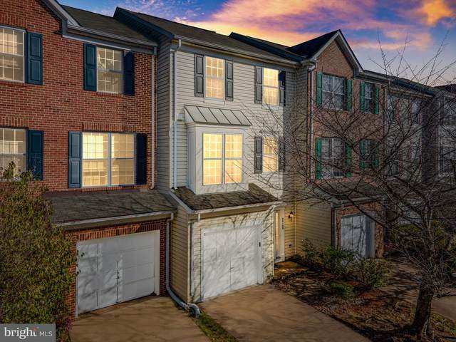 44189 Paget Terrace, ASHBURN, VA 20147 (#VALO426280) :: The Miller Team