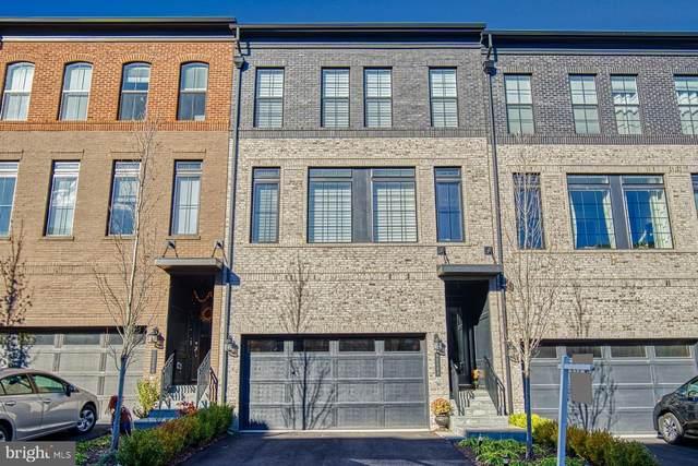42288 Porter Ridge Terrace, BRAMBLETON, VA 20148 (#VALO426322) :: The Miller Team