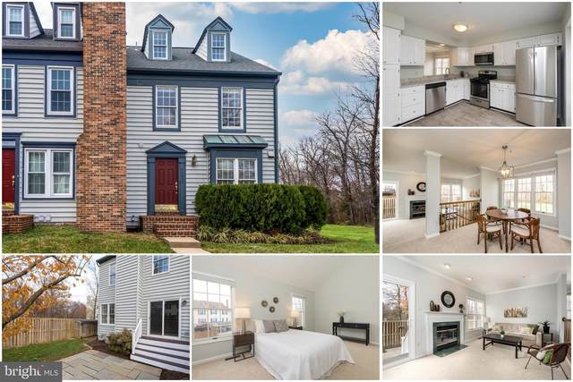 44000 Aberdeen Terrace, ASHBURN, VA 20147 (#VALO426334) :: The Yellow Door Team