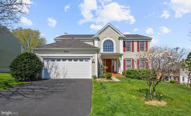 8544 Trail View Drive, ELLICOTT CITY, MD 21043 (#MDHW288098) :: Ultimate Selling Team