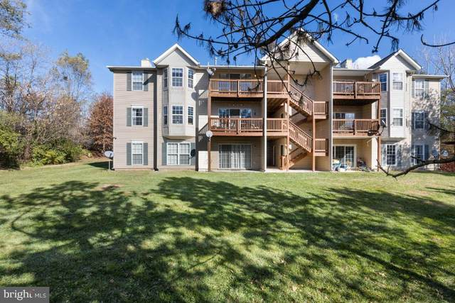 127 Brookland Terrace #8, WINCHESTER, VA 22602 (#VAFV160954) :: The Redux Group