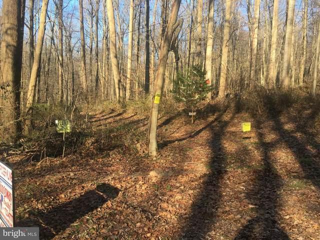 0 Mountain Spring Road, STEVENS, PA 17578 (#PALA173962) :: Flinchbaugh & Associates