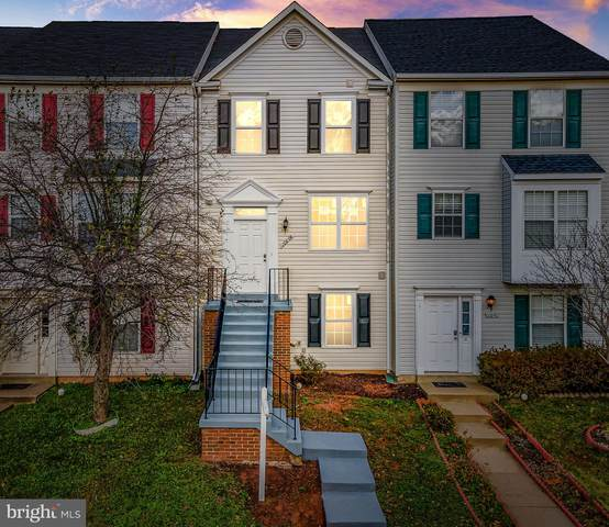 20848 Apollo Terrace, ASHBURN, VA 20147 (#VALO426348) :: The Miller Team