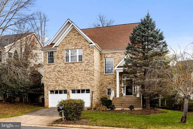 20660 Shoal Place, STERLING, VA 20165 (#VALO426362) :: The Sky Group