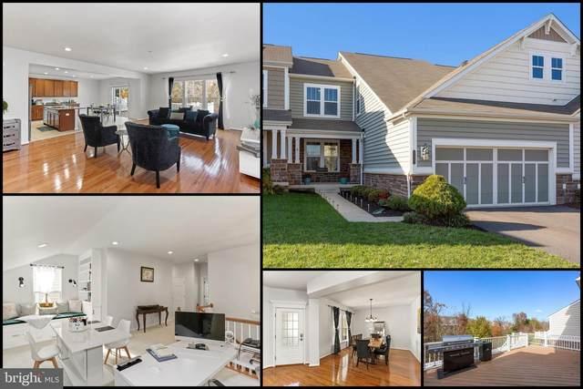 23561 Christina Ridge Square, ASHBURN, VA 20148 (#VALO426372) :: The MD Home Team