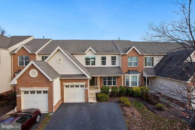 43224 Somerset Hills Terrace, ASHBURN, VA 20147 (#VALO426392) :: Pearson Smith Realty