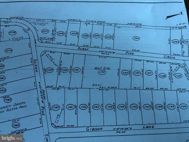 Slash Pine Circle, RUTHER GLEN, VA 22546 (#VACV123246) :: RE/MAX Cornerstone Realty