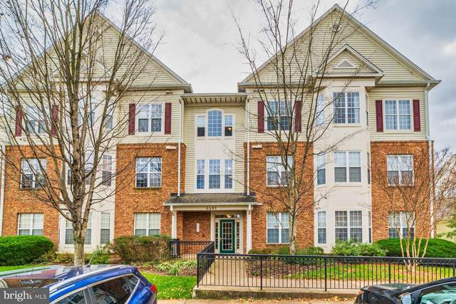 6481 Cheyenne Drive #304, ALEXANDRIA, VA 22312 (#VAFX1169208) :: The Redux Group