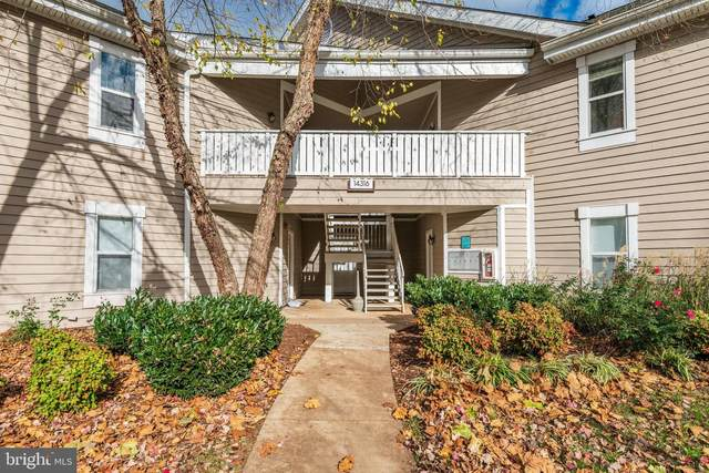 14316 Climbing Rose Way #203, CENTREVILLE, VA 20121 (#VAFX1169238) :: AJ Team Realty