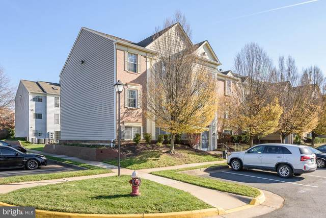 1125 Huntmaster Terrace NE #302, LEESBURG, VA 20176 (#VALO426450) :: The MD Home Team