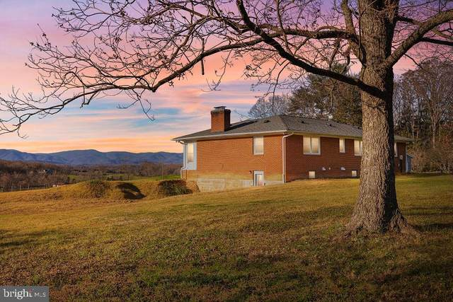 4207 Elly Road, ARODA, VA 22709 (#VAMA108756) :: Shawn Little Team of Garceau Realty