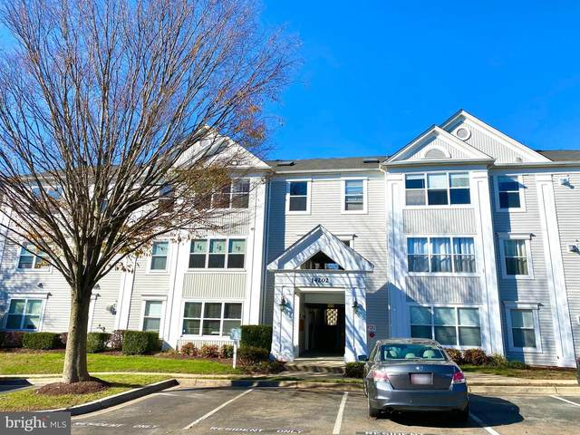 14202 Valleyfield Drive 4-38, SILVER SPRING, MD 20906 (#MDMC736044) :: Murray & Co. Real Estate