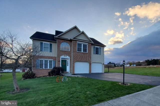 2 Hickory Tree Place, DILLSBURG, PA 17019 (#PAYK149658) :: The Joy Daniels Real Estate Group