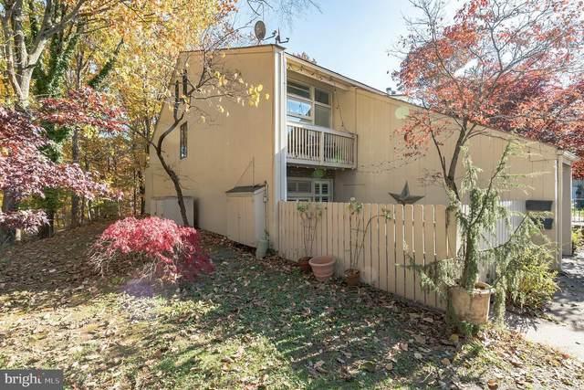 10-A Riverhill 10A, NEW HOPE, PA 18938 (#PABU516490) :: Jason Freeby Group at Keller Williams Real Estate