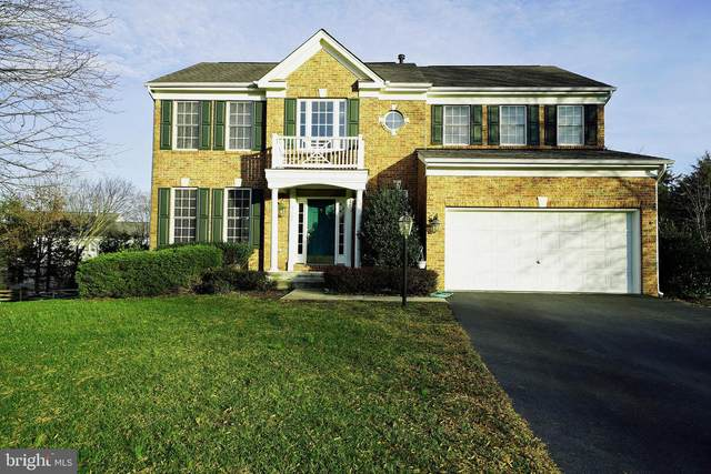 9169 Big Springs Loop, BRISTOW, VA 20136 (#VAPW510540) :: City Smart Living