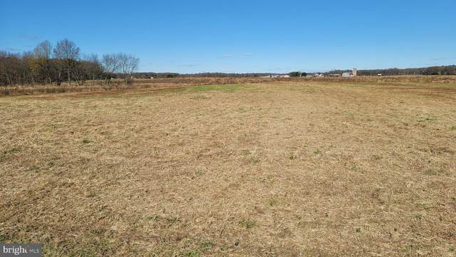 145 Murphy Road Lot 5, CENTREVILLE, MD 21617 (#MDQA146082) :: The Sky Group