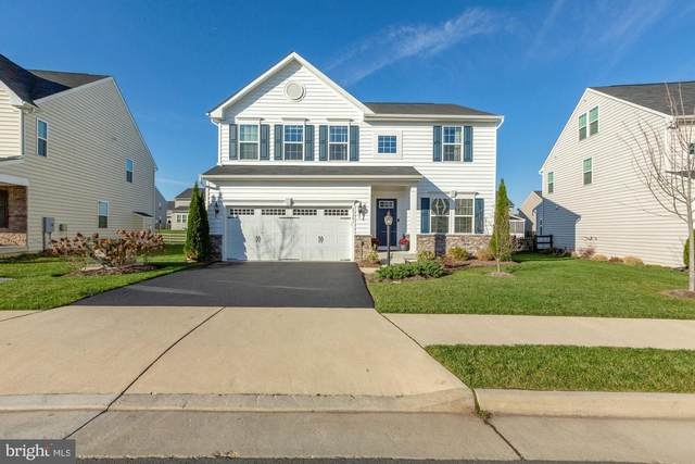 25561 Emerson Oaks Drive, ALDIE, VA 20105 (#VALO426612) :: Smart Living Experts