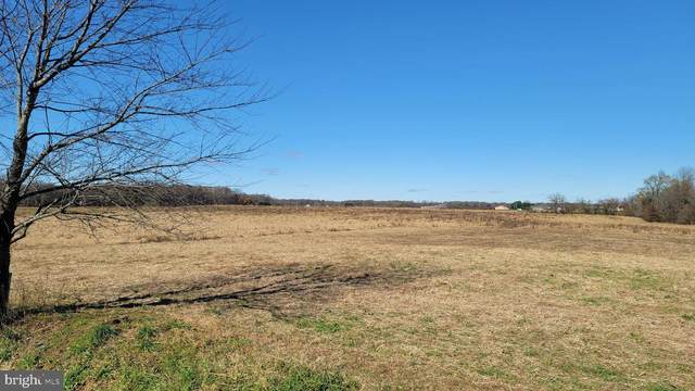 209 Murphy Road Lot 7, CENTREVILLE, MD 21617 (#MDQA146088) :: Colgan Real Estate
