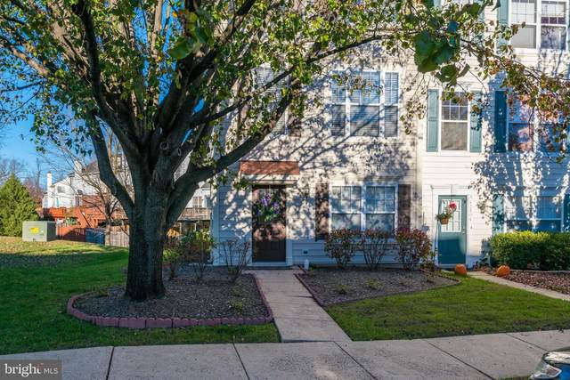 43802 Sunset Terrace, ASHBURN, VA 20147 (#VALO426620) :: Pearson Smith Realty