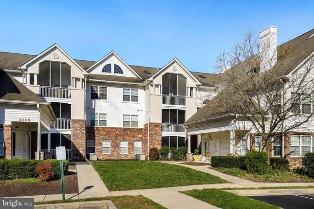 6522 Lake Park Drive #204, GREENBELT, MD 20770 (#MDPG589782) :: Colgan Real Estate