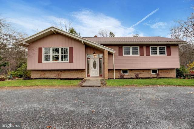310 Troup Valley Road, MOUNT PLEASANT MILLS, PA 17853 (#PASY100254) :: The Joy Daniels Real Estate Group