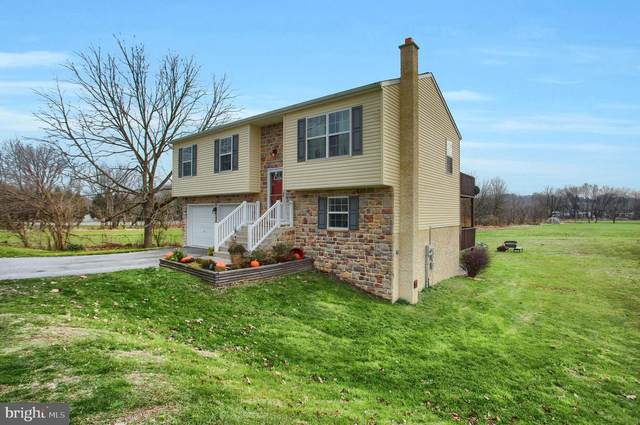 575 W High Street, MANHEIM, PA 17545 (#PALA174268) :: John Smith Real Estate Group