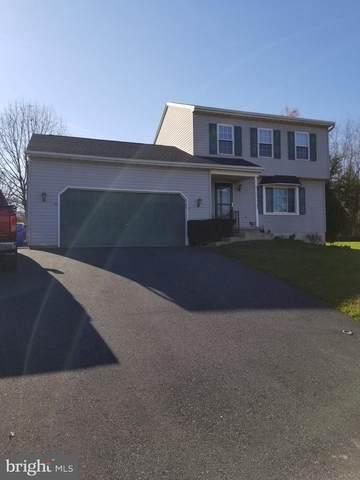 20 Barbara Lane, YORK HAVEN, PA 17370 (#PAYK149736) :: Colgan Real Estate