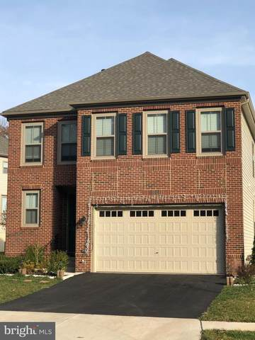 42416 Abney Wood Drive, CHANTILLY, VA 20152 (#VALO426662) :: Nesbitt Realty