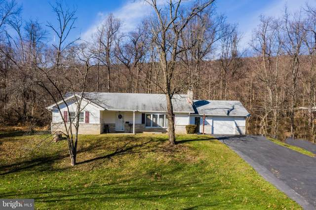 613 Mountain Street, ENOLA, PA 17025 (#PACB130342) :: The Joy Daniels Real Estate Group