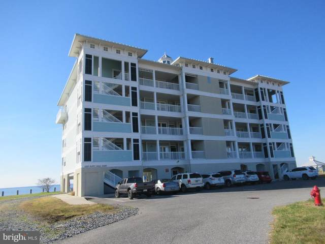 1089 Puppy Hole Court #302, CRISFIELD, MD 21817 (#MDSO104168) :: Great Falls Great Homes