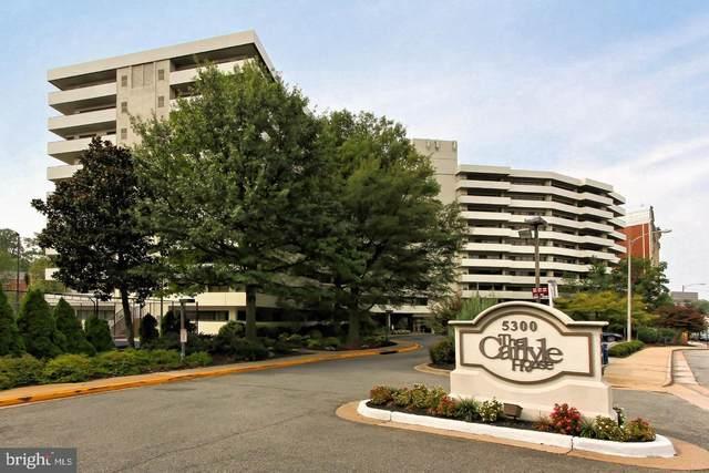 5300 Columbia Pike #103, ARLINGTON, VA 22204 (#VAAR173234) :: Network Realty Group