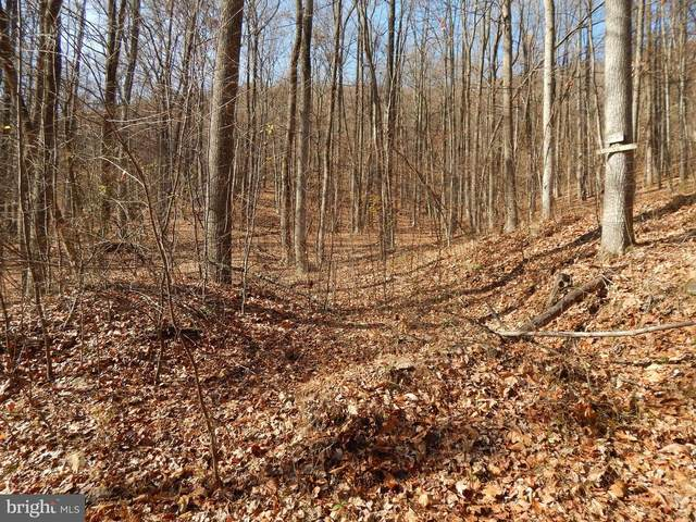 Lot T-7 Salmon Lane, BERKELEY SPRINGS, WV 25411 (#WVMO117830) :: Hill Crest Realty