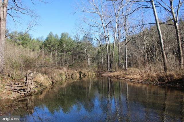 Cedar Creek Road, STAR TANNERY, VA 22654 (#VASH121030) :: Shamrock Realty Group, Inc