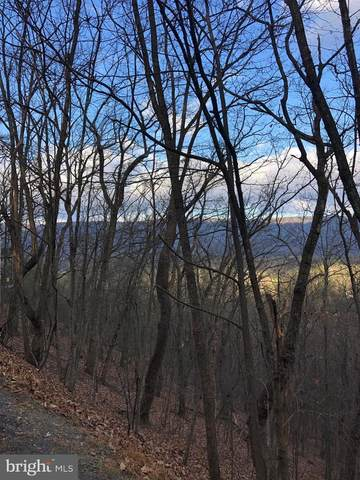 Lot 55 Fairway Drive, BASYE, VA 22810 (#VASH121038) :: Shamrock Realty Group, Inc