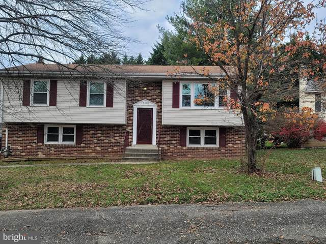 12002 Birchview Drive, CLINTON, MD 20735 (#MDPG590028) :: RE/MAX Advantage Realty