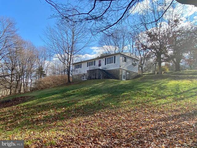 11 Rose Lane, POTTSVILLE, PA 17901 (#PASK133570) :: Ramus Realty Group