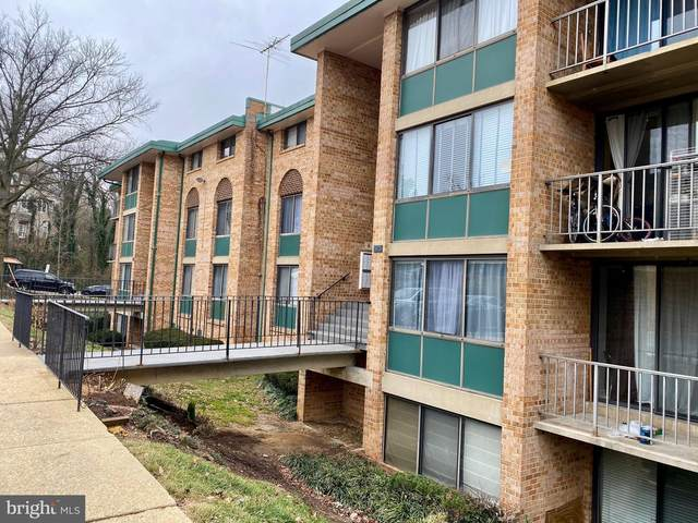 517 N Armistead Street #102, ALEXANDRIA, VA 22312 (#VAAX253868) :: Jacobs & Co. Real Estate