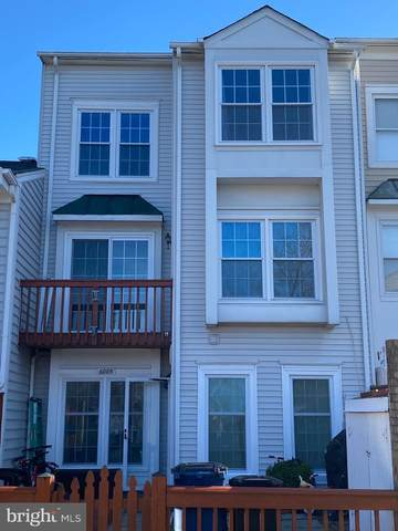 6005 Sunset Ridge Court, CENTREVILLE, VA 20121 (#VAFX1170344) :: Great Falls Great Homes