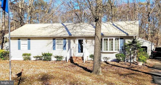 6919 Reliance Road, FEDERALSBURG, MD 21632 (#MDCM124836) :: The Sky Group