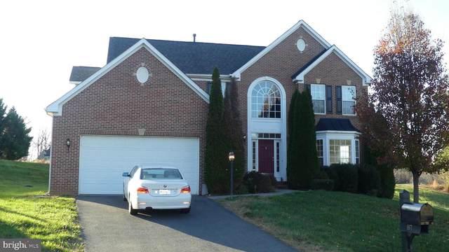 87 Blue Ridge Terrace, GORDONSVILLE, VA 22942 (#VALA122360) :: The Redux Group